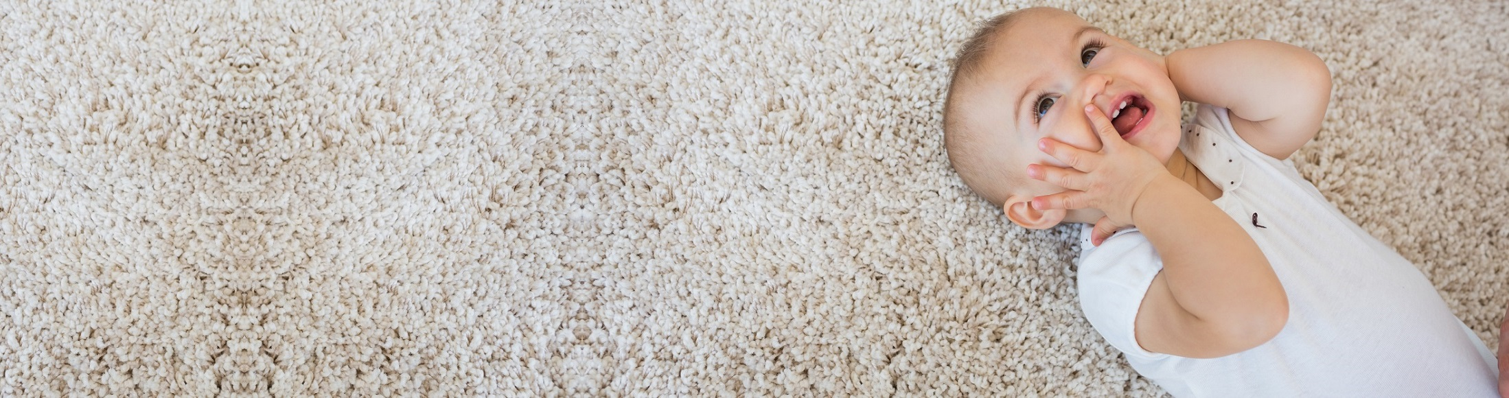 Carpet Cleaning for Over 25 Years